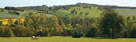 Yorkshire Sculpture Park photo