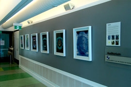 The Edge Digital Art Gallery photo