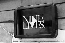 Nine Lives Gallery photo