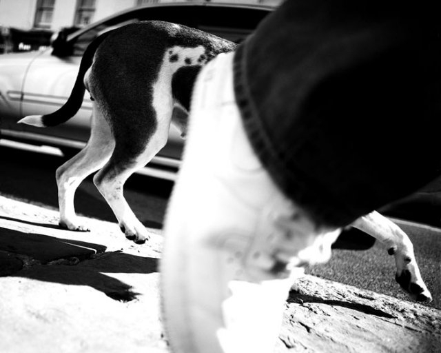 Street Photography Now Project 2011 Winners Announced image