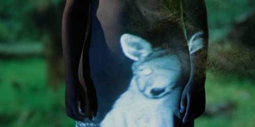 CACSA student films shortlisted for ATOM awards 2013 image