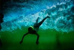 Life aquatic image