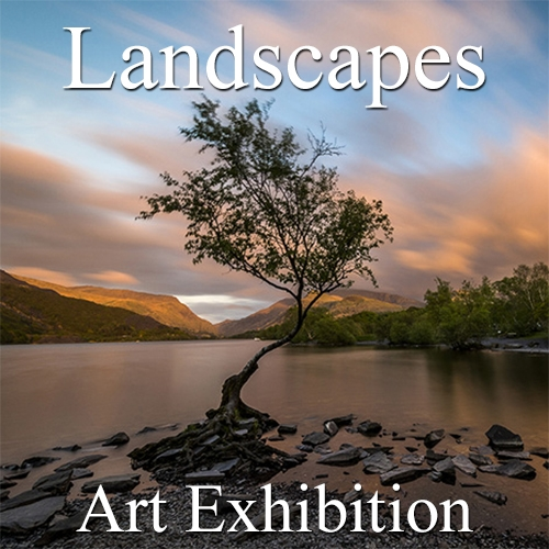 """Landscapes"" 2019 Exhibition Results Announced by Art Gallery image"