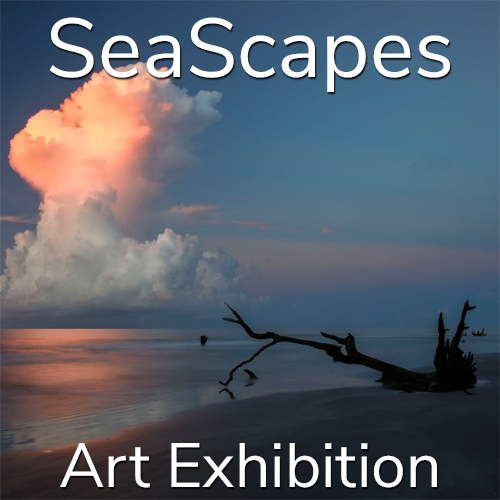"""10th Annual """"SeaScapes"""" 2020 Art Exhibition Winning Artists Announced image"""