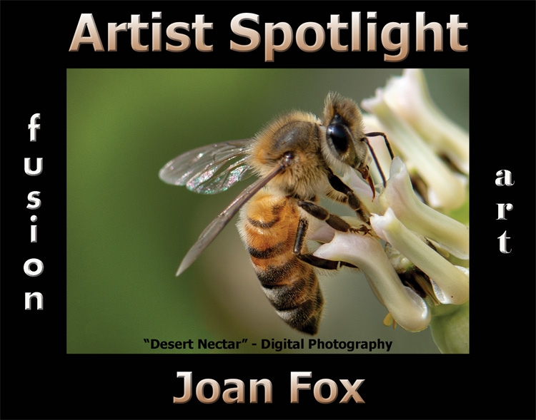 Joan Fox is Fusion Art's Photography & Digital Artist Spotlight Winner for August 2020 image