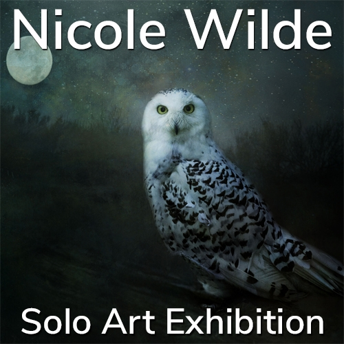 Nicole Wilde is Awarded a Solo Art Exhibition image
