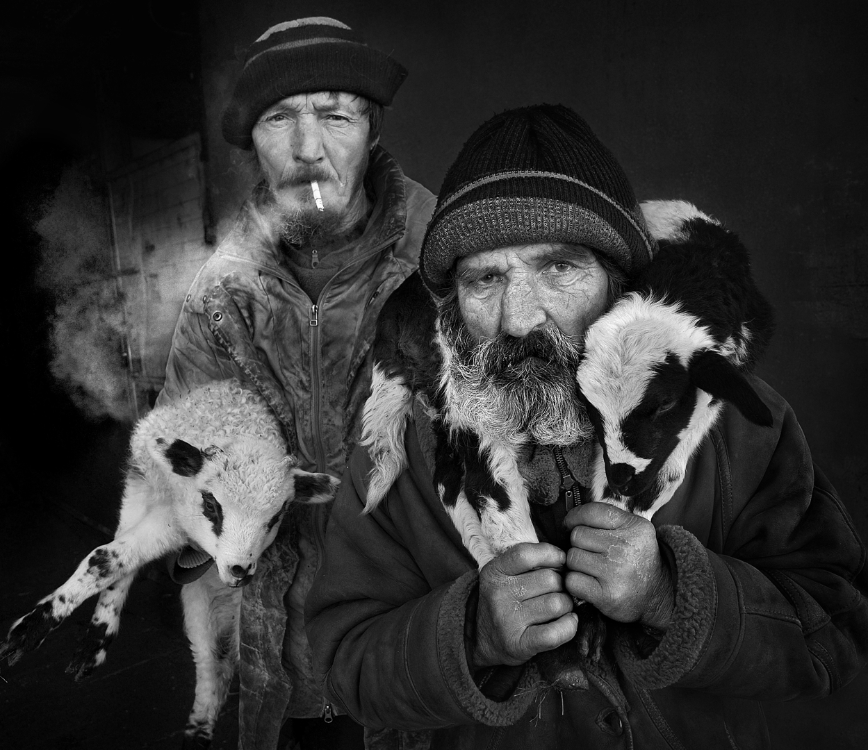 All About Photo Presents Shepherds From Transylvania image