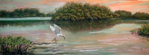 Max500_egret_mangroves