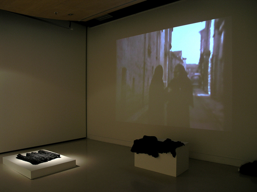 Max500_installation_landforms_i___ii_with_video_projection