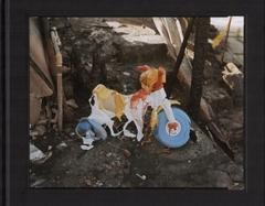 1991 by Richard Misrach image