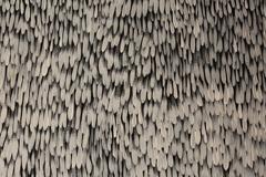 Gloria Petyarre: Leaves in the wind 1999 image
