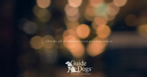 Guide Dogs City image