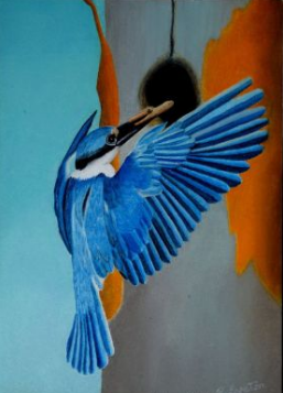 Beautiful Kingfisher image