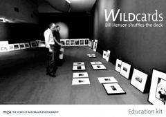 Wildcards image