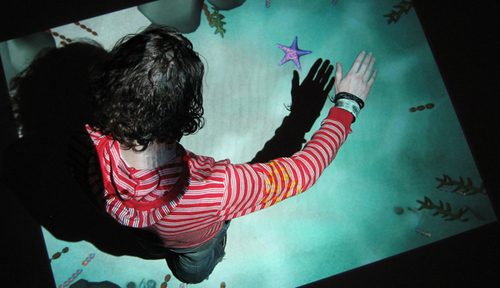 Immersion (2007) image
