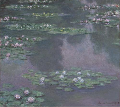 Waterlillies image