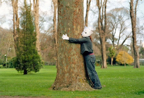 Hugging trees is a sign of mental illness (Me/Knut) image