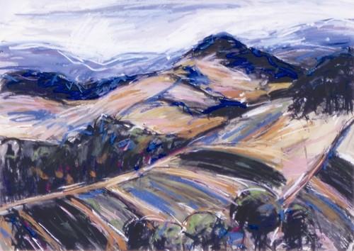 Hunchy Landscape image