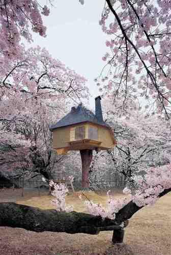 Chashitsu Tetsu (Teahouse Tetsu) image