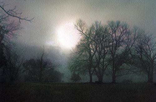 Morning Mist, Bundanon: 6.53am image