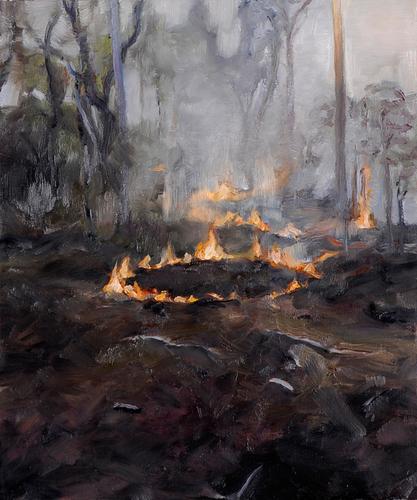Farewell Fire #3 image