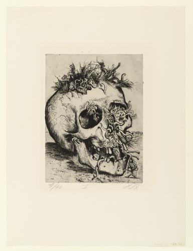 Skull (Schädel) from the portfolio The War (Der Krieg). 1924 image