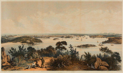 The city and harbour of Sydney from near Vaucluse 1852 image