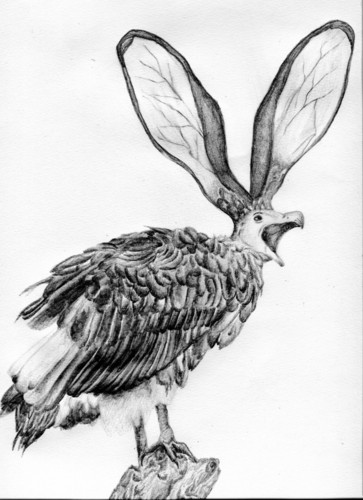 Vulture Rabbit  image