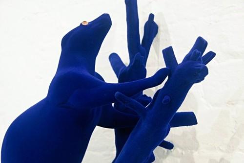 Blue Velvet (Possum) image