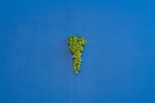 Sour Grapes on Russels Red image