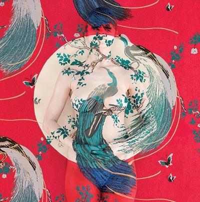 Exotic Bird Mandala II image