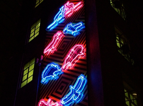 Neon Natives image