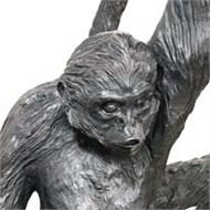 Curator Talk: Meet the Curator of Monkey Grip image