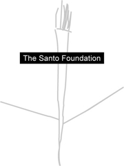The Santo Foundation $16,000 in Awards for Artists image
