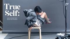 True Self: David Rosetzky Selected Works image