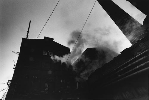 David Lynch: The Factory Photographs image
