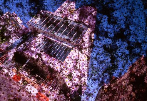 Yuji Agematsu: Walk On A,b,c, image