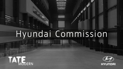 The Hyundai Commission 2016 image