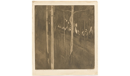 Stars in the river—the prints of Jessie Traill  image