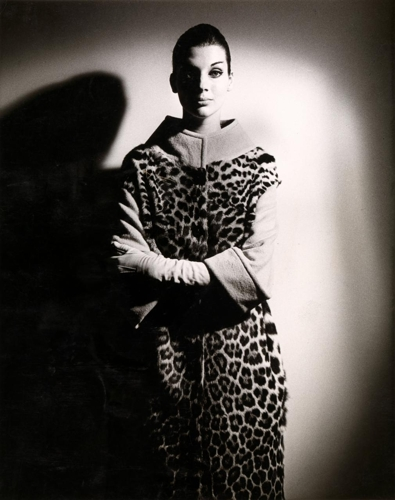 Henry Talbot