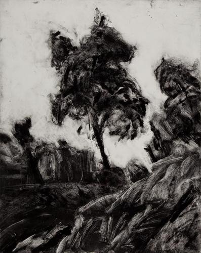 Desert Monoprints image