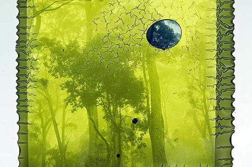 Grayson Cooke, 'Deforest' (still), 2016 image