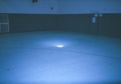 Blue Roller Rink image