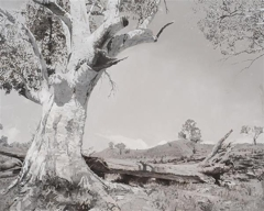 Chris Langlois - Of Land. Of Sea image