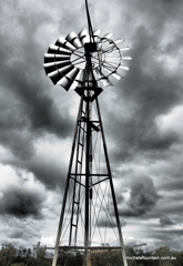 It Should Stand Forever (Jugiong NSW) image