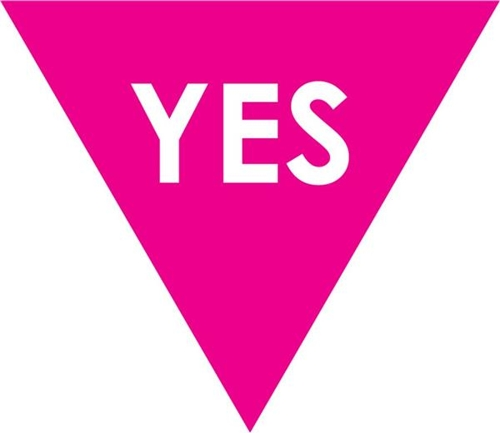 VOTE YES image