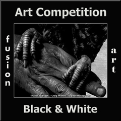2nd Annual Black & White Art Competition image