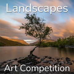"""10th Annual """"Landscapes"""" Online Art Competition image"""