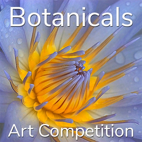 "11th Annual ""Botanicals"" Online Art Competition image"