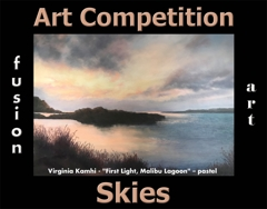 5th Annual Skies Art Competition image